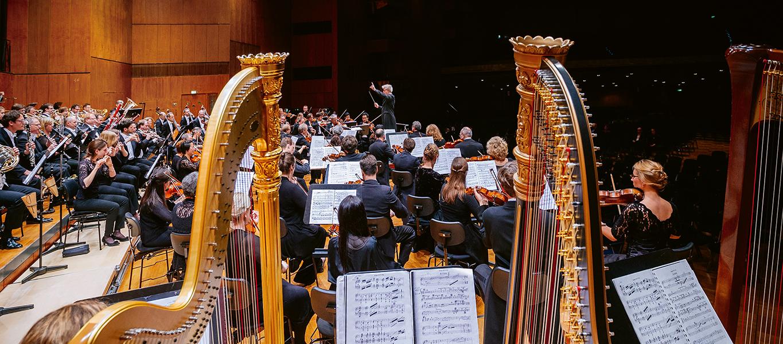 Stuttgarter Philharmoniker (Foto: Thomas Niedermüller)